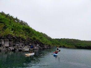 プランの魅力 富士五湖唯一の「樹海クルージング」 の画像