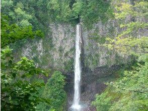 プランの魅力 白水の滝を写真に残しましょう の画像