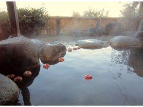 プランの魅力 With hot spring bathing ticket! の画像