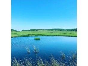 プランの魅力 北の尾瀬と呼ばれる高層湿原 の画像