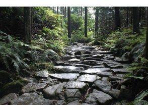 プランの魅力 熊野古道・馬越峠 の画像