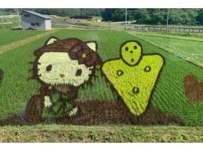 プランの魅力 Rice field art の画像
