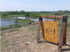 プランの魅力 位于埼玉县埼玉市的水沼稻田,是一个自然丰富的农场。田园风光♪ の画像