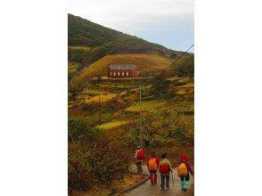 プランの魅力 野崎島の旧野首教会を目指して歩く の画像