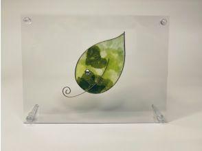 プランの魅力 Experience leaf の画像