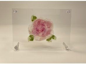 プランの魅力 Experience rose clear frame の画像