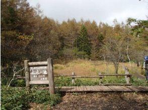 プランの魅力 羽衣池で休憩 の画像