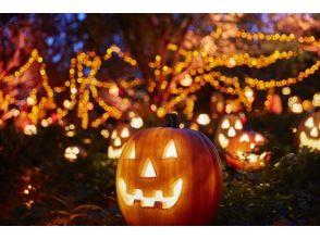 プランの魅力 ハウステンボスの秋の商品をご紹介 の画像