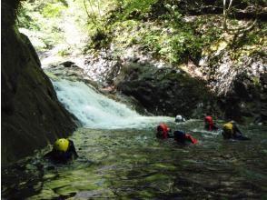プランの魅力 大自然のプールでぷかぷかフロート体験 の画像