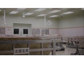 プランの魅力 通常入室できない壁画修理作業室の中を360度映像で体験! の画像