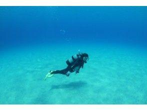 プランの魅力 透明度の高い海 の画像