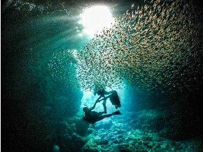 プランの魅力 青の洞窟での開催 の画像