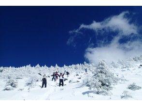 プランの魅力 Northern Yatsugatake A forest that shines white with hoarfrost in the blue sky! の画像