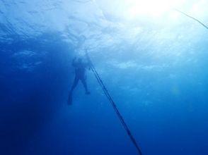 プランの魅力 The blue of the sea stands out の画像