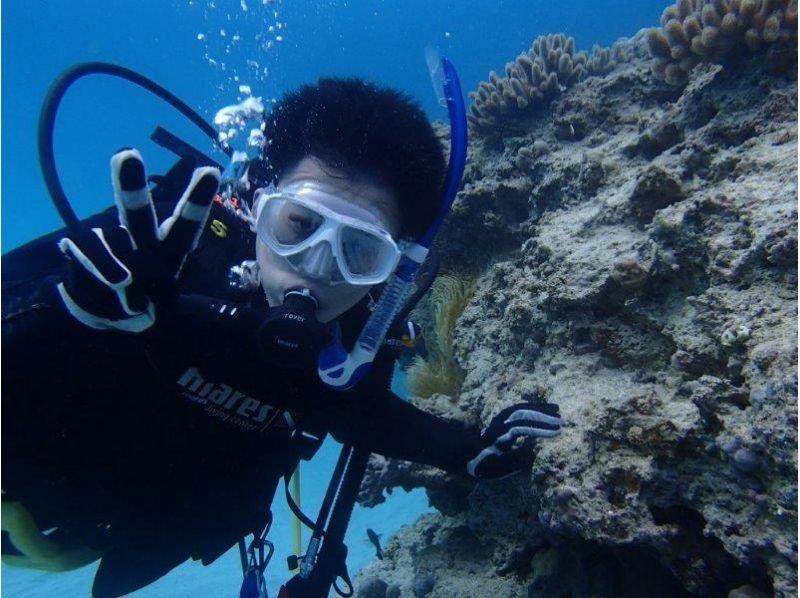 プランの魅力 水中でパシャ! の画像
