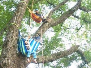 プランの魅力 木の上のハンモック の画像