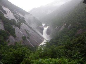 【鹿児島・屋久島】島内をぐるっと一周して滝めぐり!【約7時間】の魅力の説明画像