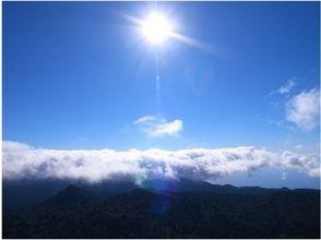 【鹿児島・屋久島】気軽に本格登山、黒味岳【がっつり11時間以上】の魅力の説明画像