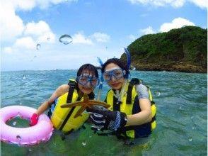 【鹿児島・奄美大島】憧れのウミガメに会いに行こう!シュノーケル体験(ウミガメ探索コース)の魅力の説明画像