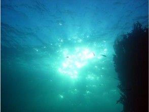 プランの魅力 神秘的な感動をよぶ青の洞窟コース の画像