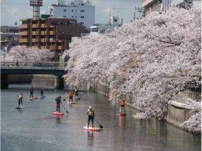 【横浜】老若男女問いません!SUP初心者講習 都市の水辺がもっと身近に!(2時間コース)の魅力の説明画像
