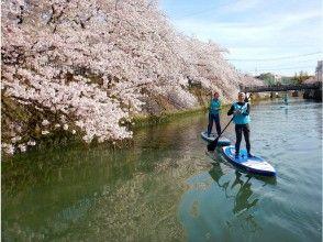 プランの魅力 Seasonal planning tours such as Sakura SUP の画像