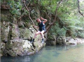プランの魅力 Natural swing の画像