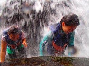 プランの魅力 瀑布 の画像