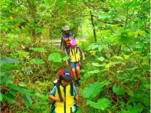 プランの魅力 叢林探險 の画像