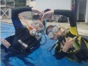 【神奈川/湘南】通年楽しめる!海の世界をのぞいてみよう!体験ダイビングの魅力の説明画像