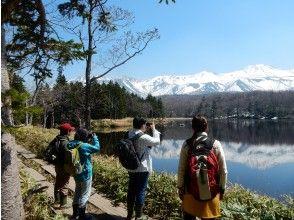 プランの魅力 Of course, we will also guide you to the popular Shiretoko Five Lakes の画像
