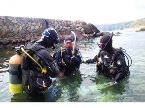 【静岡・東伊豆】体験ダイビング(半日コース)の魅力の説明画像