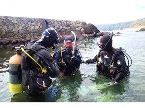 【静岡・東伊豆】体験ダイビング(ディスカバー・スクーバダイビング)の魅力の説明画像