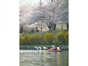 プランの魅力 Cherry-blossom viewing canoe の画像