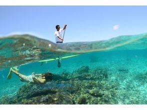 【沖縄・慶良間】ビーチから行くsup&シュノーケルツアー(3.5時間)の魅力の説明画像