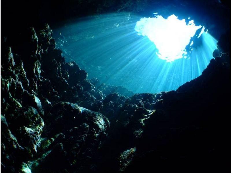 プランの魅力 自然の造形美あふれる海の世界へご案内 の画像