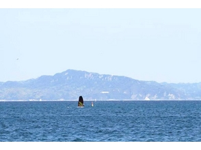 [Kanagawa, Miurakaigan] SUP lessons attractive description image of (half-day course)