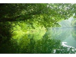 プランの魅力 緑の森の湖で、ゆったりと水上散歩♪ の画像