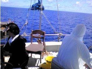 【沖縄・久米島】手ぶらで五目釣り体験!!★半日プラン★の魅力の説明画像