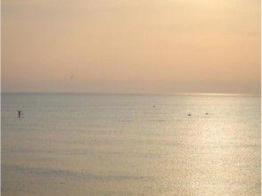 プランの魅力 イルカと夕日 の画像