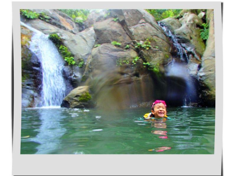プランの魅力 静かな滝! の画像