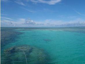 プランの魅力 石垣島の素晴らしい自然を体験できます! の画像