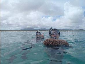 【沖縄・石垣島】美しいサンゴ礁の海!石垣島白保シュノーケルツアーの魅力の説明画像