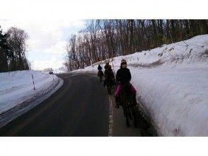 [Hokkaido Kitahiroshima] attractive description image of horse trekking (outside the square 60 per minute)