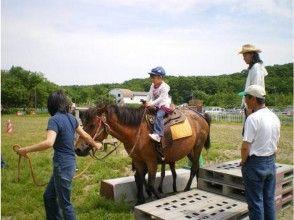 【北海道・北広島】乗馬体験(引き馬:馬場内2周)の魅力の説明画像