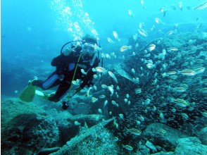 プランの魅力 黄金崎の青い海 の画像