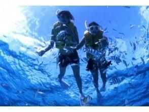 【沖縄・那覇】ナガンヌ島上陸!海水浴ツアーの魅力の説明画像