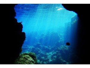 [Okinawa Maeda Misaki] encounter rate greater than 98%! Blue cave diving and whale watching of the charm of the description image