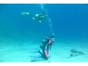 プランの魅力 平崎の海は沖縄の海に負けない透明度。 の画像