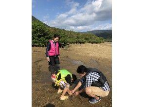 干潟散策でカニ等の甲殻類を観察※干潮時間帯限定